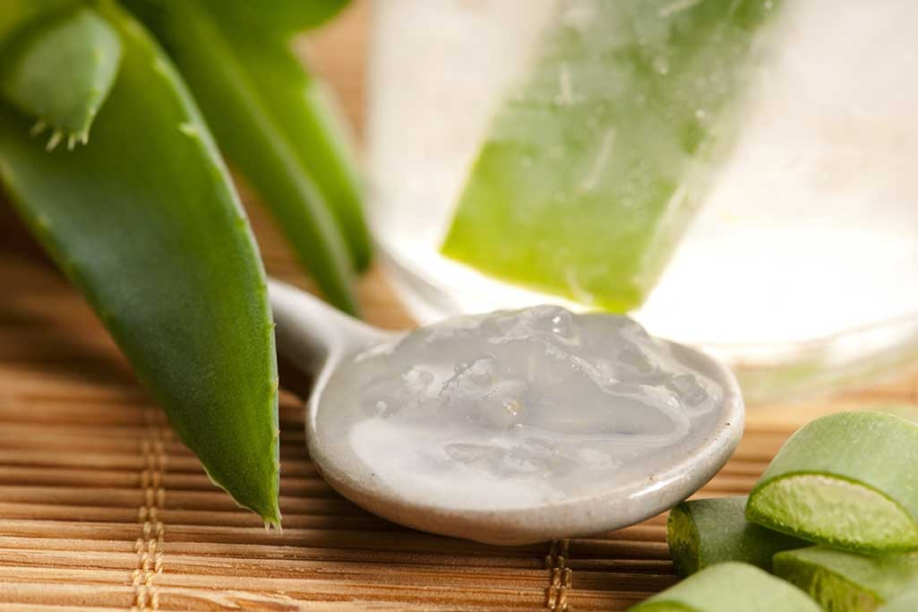 Das pure Aloe Gel