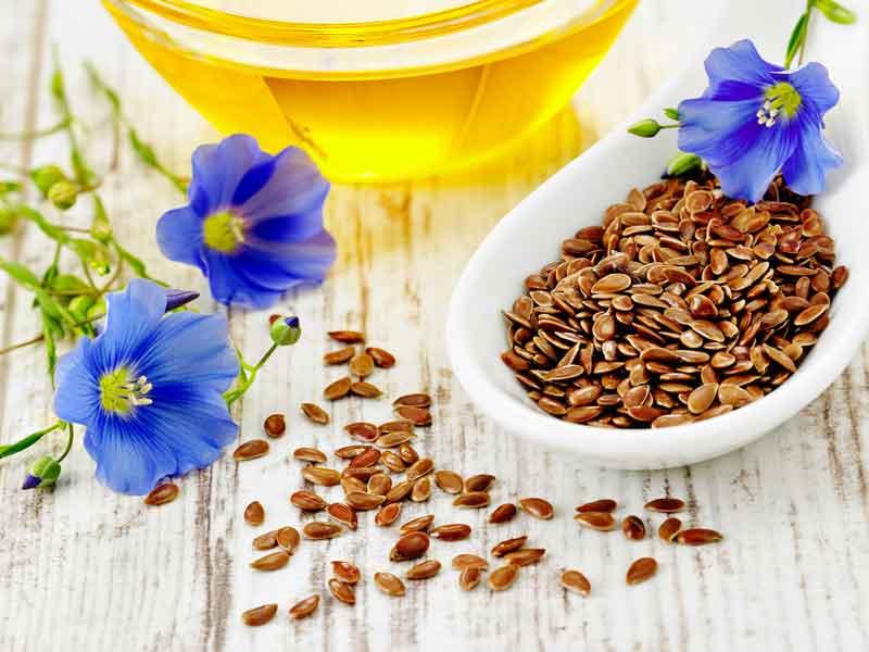 einsamen Öl ist sehr gesund und hat den höchsten pflanzlichen Anteil an Omega 3 Fettsäuren.