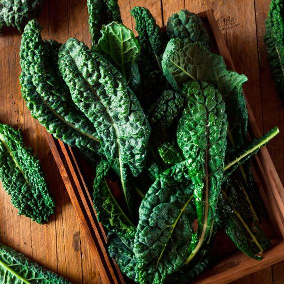 Grünkohl ist ein unglaublich gesundes Gemüse, reich an wertvollen Vitalstoffen und vor allem Calcium. Eine echte Alternative zu tierischen Produkten.