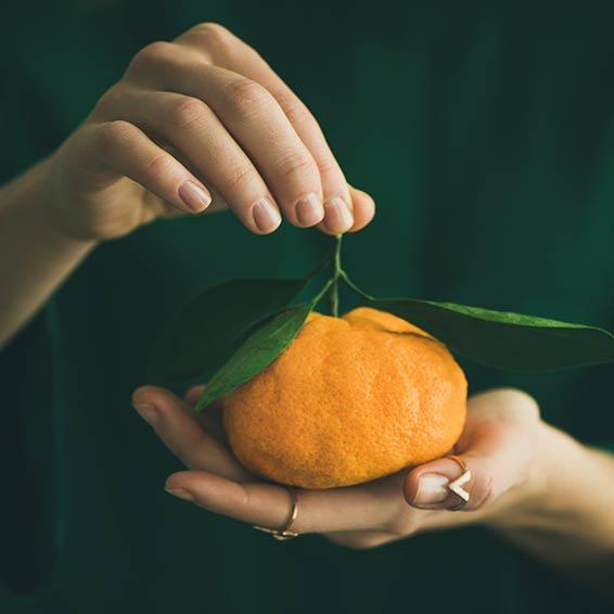 Viel Vitamin C in der Winterzeit.